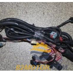 Проводка Блока Управления (жгут проводов) ВАЗ 2107