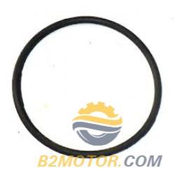 Кольцо уплотнительное погружного бензонасоса 405, 406 (круглое)